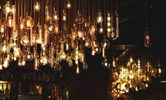 Bulb, light bulb, light and handing HD photo by Anh Duy ( on Unsplash Vintage Light Bulbs, Vintage Lighting, What Is Event, Edison Lighting, Edison Bulbs, Night Photos, Event Design, Event Planning, This Book