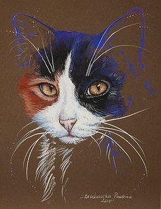 Tricolor cat by Paulina Stasikowska # Cats painting Artist Directory Pastel Drawing, Pastel Art, Cat Drawing, Easy Flower Drawings, Cool Drawings, Animal Paintings, Animal Drawings, Little Mermaid Drawings, Oil Painting Texture