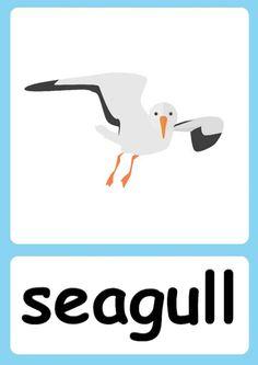 Ingles Kids, Baby Flash Cards, Animal Activities For Kids, Flashcards For Kids, Kids English, Pixar Movies, Sea Theme, Teaching Materials, Teaching Kids