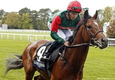 Sagaro winner MIZZOU features among 14 declared for the Gold Cup at #RoyalAscot on Thursday. Clever Cookie is out.