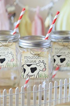 Farm theme, Birthday Party, Moon Shine, Hay there, Barn, Mason Jar tags, 12 per set