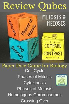 Fun game for reviewing mitosis and meiosis in Biology!