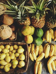 tropical fruit stand