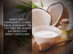 Mixed-with-peppermint,-lemon-balm,-rosemary,-or-tea-tree-oil-makes-an-excellent-insect-repellant