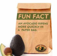 4 Avocado Hacks You Need to Know - Happily Unprocessed Peanut Butter Buckeyes, Reeses Peanut Butter, How To Ripen Avocados, Marinated Tofu, French Dishes, Ripe Avocado, Avocado Recipes, Paleo Recipes, Strawberry Jam
