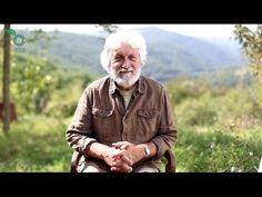 Jacques Antonin : Nourrir notre âme - YouTube tournedol germe pancreas siege de lame, chahra solaire