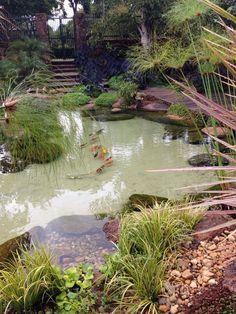16d7880ecf807b garden ponds for sale  watergarden Garden Pool