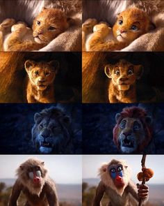 Lion King trailer releases few days ago, and with time it start being memes now. Popularity of the Lion King Memes are increases with time. Today we post 20 Best Lion King memes Disney Magic, Disney Pixar, Disney Fan Art, Disney Animation, Simba Disney, Disney E Dreamworks, Film Disney, Disney Lion King, Humanized Disney