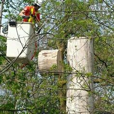 We go to great lengths safety first one piece at a time call for free estimate 647-545-8733