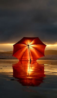 Umbrella at sunset