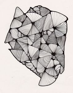 texturas_cockels_mussels | por Maria Luisa Bermejo
