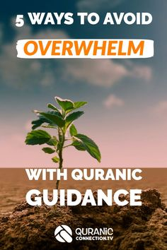 5 Ways to Avoid Overwhelm with Quranic Guidance . Practical guide for when you feel it's getting too much, we all feel this at times and Allah gives muslims clear coping strategies.