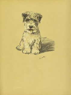 TERRIER Dog Print, 1930s Lucy Dawson Dogs, Wall Art, Puppy PRint, Antique print, Wall Decor, Animal PRint, Art Illustration, book page, B-1