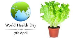 World Health Day 2016 : Lets kill Diabetes organically - Plant Talk - NurseryLive Wikipedia