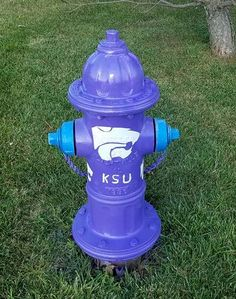KSU Wildcats fire hydrant: Follow Willow Brook Drive all the way West, look just beyond Timberline Dr. to find the hydrant. Fire Hydrants, Fire Equipment, 3d Street Art, Firefighting, Purple, Blue, Lavender, Fantasy, Colour