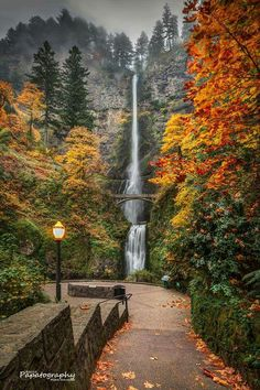 Multnomah Falls (near Portland, Oregon) - gorgeous autumn waterfall scene Oh The Places You'll Go, Places To Travel, Places To Visit, Travel Destinations, Places Ive Been, Oregon Travel, Travel Portland, Oregon Vacation, Flora Und Fauna