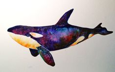 Orca Killer Whale watercolor illustration ©Michelle Scott, owner of dotsofpaint Studio in Northern California. ALL RIGHTS RESERVED. dotsofpaint.com