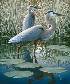 Blue Herons | Ben W Essenburg