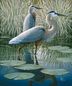 Blue herons. Painting/print by Ben W. Essenburg ~ www.benwessenburg.com