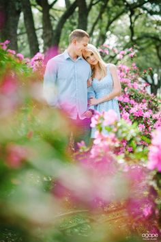 Outdoor engagement pictures  Pink Azaleas  © http://agapehousestudio.com