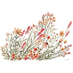 Red Wildflowers, an art print by Vikki Chu (1.145 RUB) ❤ liked on Polyvore featuring filler and flowers