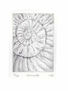 Etching no.9 of an ammonite fossil in an edition of 100 £30.00