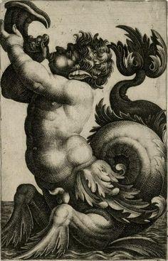 Creature of the sea