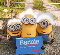 Minions say Bernie for President Bernie Sanders For President, Mr President, Bernie Memes, Collective Bargaining, Primary Election, Coping Skills, Presidential Candidates, We The People, Minions
