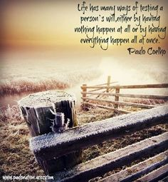 Life has many ways of testing a person's will, either by having nothing happen at all or by having everything happen at once. - Paulo Coelho