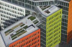 Central Saint Giles Roof Terraces