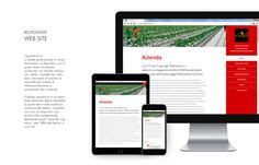 #Website #responsivedesign #responsive #graphicdesign #css #html5 #advertising