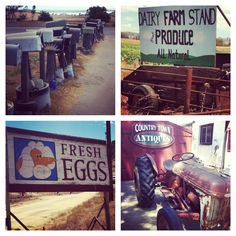 Photos I took today out in Ramona, CA! Ramona California, Farm Stand, Spaces, Country, Photos, Pictures, Rural Area, Country Music
