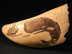 Antique scrimshaw on whale's tooth. Whale Sketch, Art Carved, Carved Wood, Bone Carving, Lost Art, Naive Art, Ancient Artifacts, Ivoire, New Artists