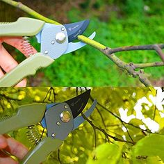 8 Professional Pruning Shears Trimmer Tool Garden Clippers -- More info could be found at the image url.