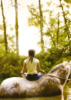 Horseback yoga if this doesn't look relaxing I don't know what is.