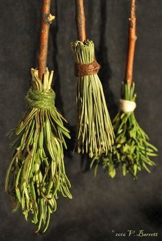 Kitchen Magic, Kitchen Witch, Wiccan Spells, Witchcraft, Autumn Witch, Celtic Druids, Hedge Witch, Herbal Magic, Apothecaries