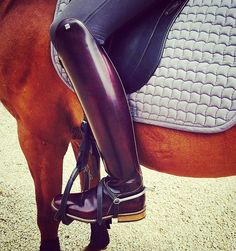 DonaDeo Matteo in Brushed Bordo is stunning thanks to Lara Kuropatwa for the photo. Dressage Horses, Red Boots, Shoe Dazzle, Leather Boots, Riding Boots, Oxford Shoes, Dress Shoes, Brown, Unique