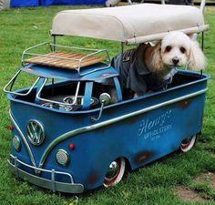 Volkswagen single cab pup hauler
