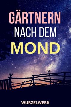 Gärtnern nach dem Mond: So gärtnerst du nach dem Demeter-Mondkalender: den Aussaattagen von Maria Thun. Alles Hokuspokus? Lies selbst! #Wurzelwerk #Mondkalender #Garten