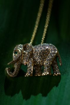 Once there was an elephant Bright like a diamond. More picures...