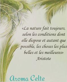 🌴🍃🌿🌱🌷🍍🍉 #aromacelte #bretagne #citation #huilesessentielles #nature #natural #plantes #eag #sante #Aristote #goodday #mer #serenite #naturel
