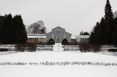 Helsingin kaupungin Talvipuutarha #helsinki #finland