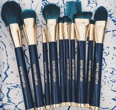 Sonia Kashuk Limited Edition Teal Color Crazed 10 Pc Makeup Brush Set  Makeup Tools & Accessories | eBay
