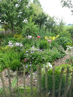 Hanne's garden 4