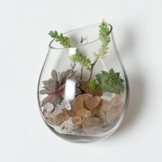 """This single bubble of glass floats gently downwards on your wall, adding depth and interest to your glass garden.   - Glass   - Opening: 3.5"""" diameter   - Hand wash   - Imported -  8""""H, 6.75""""W, 4.25""""D. 68.00"""