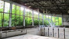 PRIPYAT (NRK): En gang bodde det 50.000 mennesker i den ukrainske byen Pripyat. Så eksploderte reaktor nummer fire ved Tsjernobyl og i 30 år har naturen skritt for skritt tatt tilbake byen.