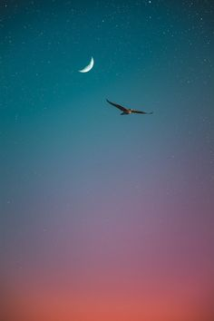 Images From My Mind - - Life is beautiful - by Pedro Gabriel Eyes Wallpaper, Shiva Wallpaper, Animal Wallpaper, Creative Photography, Nature Photography, Ipad Background, Watercolor Sky, Moon Pictures, Moon Art