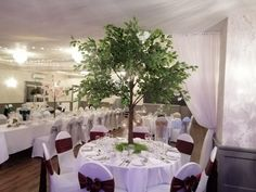 www.eze-events.co.uk Water Beads, Glass Beads, Real Flowers, Silk Flowers, Tree Wedding Centerpieces, Ficus Tree, Mirror Plates, Floating Candles, Colour Schemes
