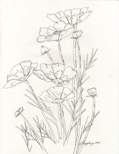 Flower line drawing by butterflylr on deviantART