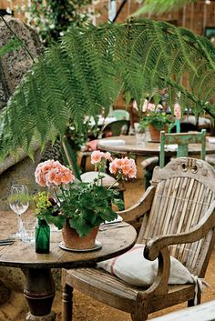 love the peach geraniums in old pot at the table.